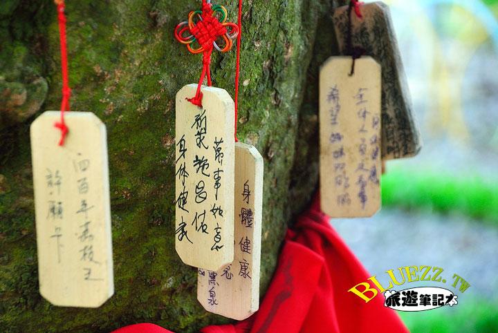 荔枝王-09.jpg
