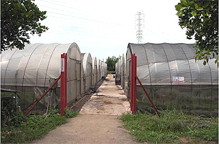 九斗村休閒有機農場