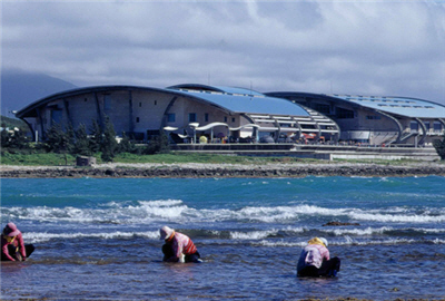海洋生物博物館(一)