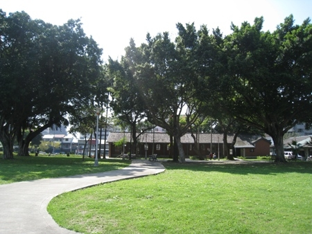 園區內喬木成蔭及寬闊草皮區