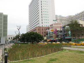 中國醫藥大學綠園道