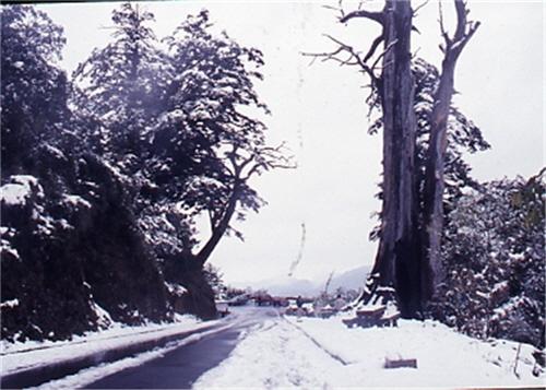 南橫檜谷雪景