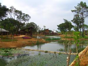 桃園八德埤塘生態公園-1
