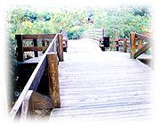 清水岩遊憩區