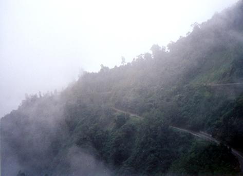 東埔山觀景點