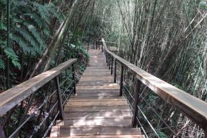 角板山避難步道1