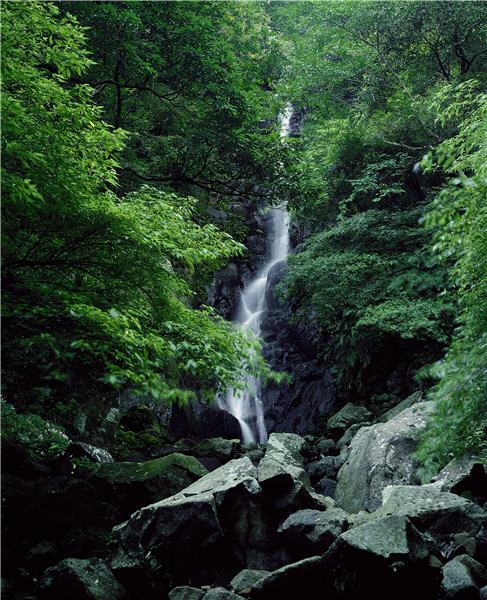 絹絲瀑布 / 安世中攝,陽明山國家公園管理處提供