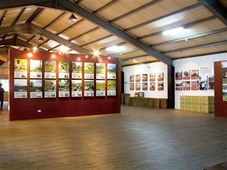 關西茶業史 台灣紅茶文物館