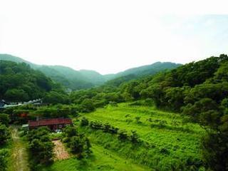 飛鳳山(日出美景)