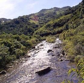 雙溪河沿岸溪釣