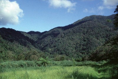 哈盆自然保留區