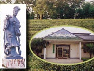 茶葉展示中心
