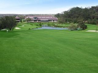 原野風情 立益高爾夫球場
