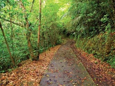 大舌湖健行步道