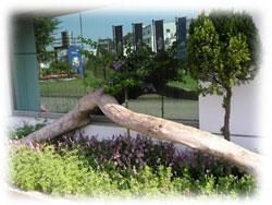 雅聞魅力博覽館