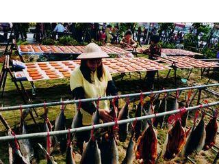 北台灣最具規模的烏魚養殖區 拔子窟烏魚養殖區