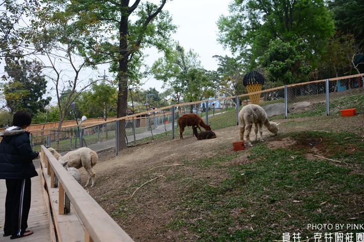 【彰化員林景點】克林姆莊園-驚!沒想到員林也有動物園!?