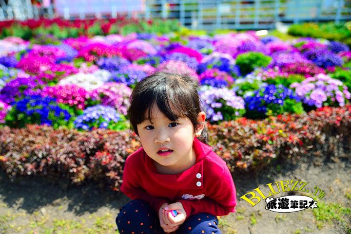 中社觀光花市 03.jpg