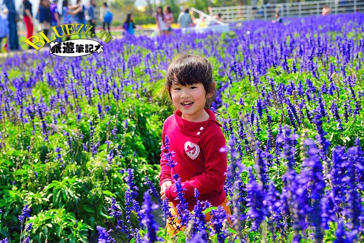 中社觀光花市 19.jpg