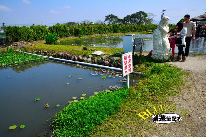 中社觀光花市 20.jpg