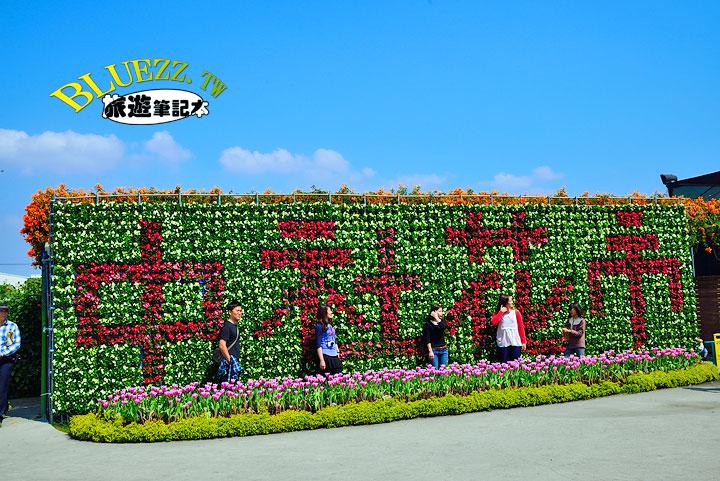 中社觀光花市 29.jpg