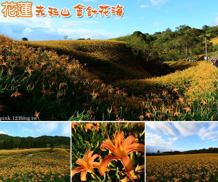 【花蓮景點】赤科山金針花季2014,黃澄澄的花海現正盛開中…-1未命名--1.jpg