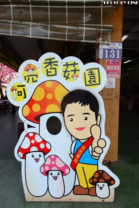 台中新玩法!新社「阿亮香菇園」採菇、吃菇、買菇趣~-DSC_5068.jpg