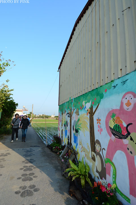 「台中地景藝術節」迷失的小熊現身。讓我們一起愛護這塊土地!-DSC_5960.jpg