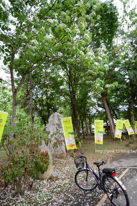 【2015南投桐花祭】牛耳藝術渡假村.現正盛開中!-DSC_9505.jpg