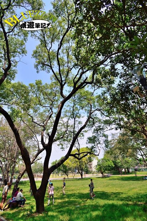 坪林森林公園-11