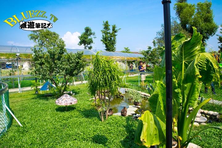 赤腳ㄚ生態農莊-DSC_2447.jpg