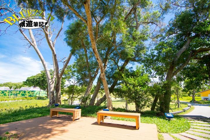 圳前仁愛公園-DSC_3187.jpg