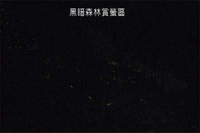 小精靈螢火蟲教育館-夜行室.jpg