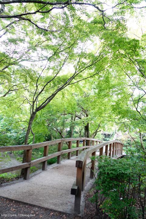【日本九州】搭乘由布院之森列車,遊湯布院、賞金麟湖-DSC02888.jpg