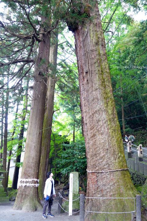 【日本九州】搭乘由布院之森列車,遊湯布院、賞金麟湖-DSC02973.jpg