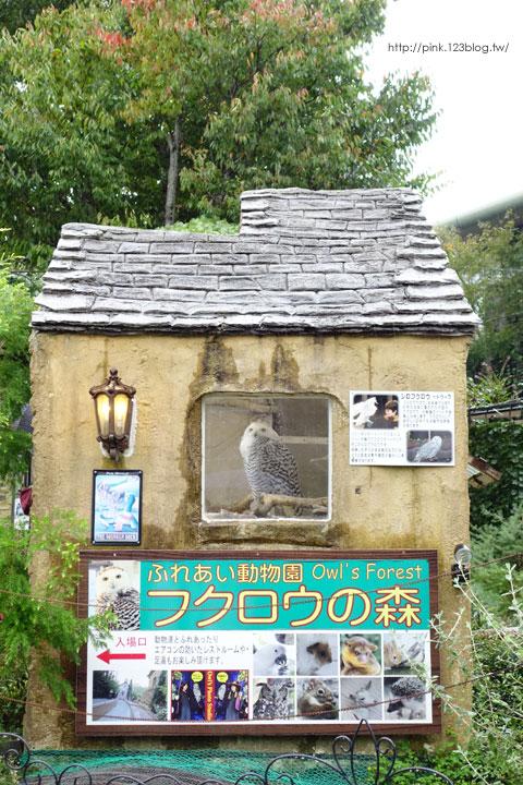 【日本九州】搭乘由布院之森列車,遊湯布院、賞金麟湖-DSC03014.jpg