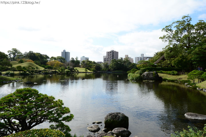 【日本九州】熊本水前寺成趣園。回遊式庭園令人駐足!-DSC_7227.jpg