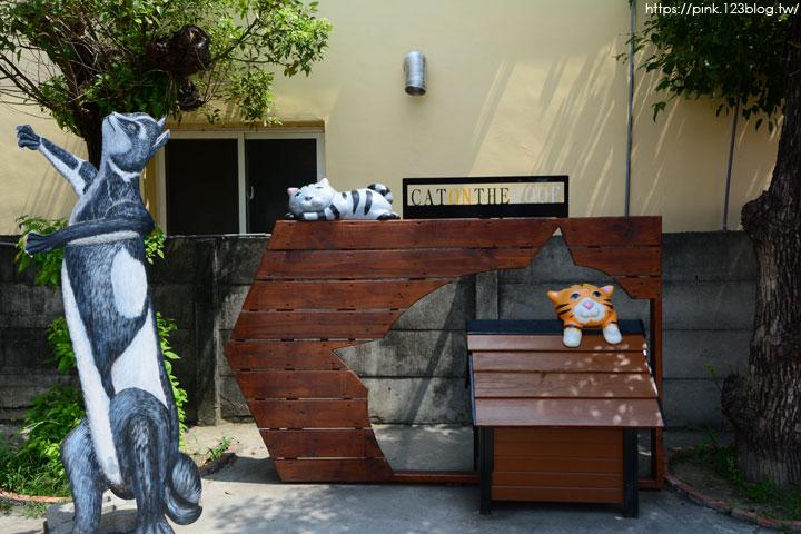 【虎尾景點】屋頂上的貓之「貓咪小學堂」~跟著貓咪上學趣!-DSC_6500.jpg