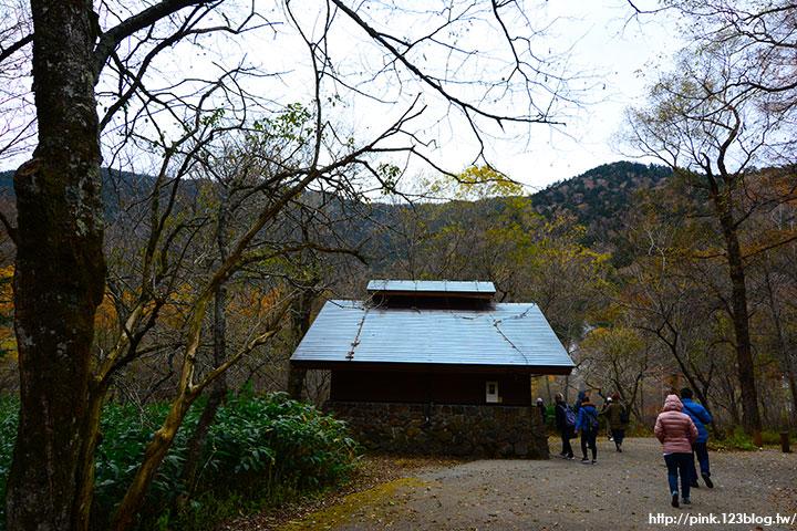 【日本北陸】長野縣上高地。亞洲版的阿爾卑斯山,美麗景緻讓人讚嘆!-DSC_2619.jpg