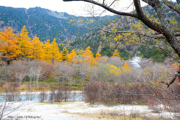 【日本北陸】長野縣上高地。亞洲版的阿爾卑斯山,美麗景緻讓人讚嘆!-DSC_2624.jpg
