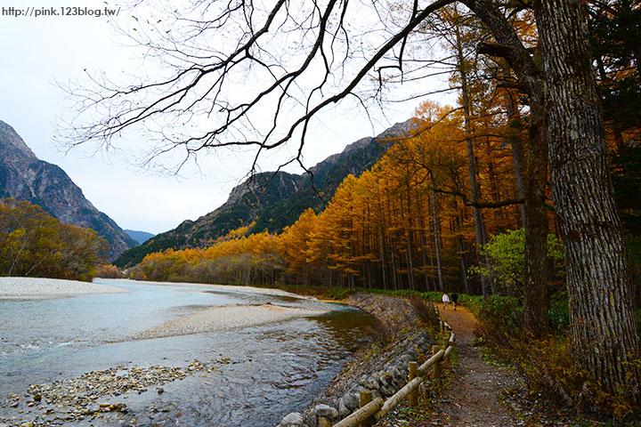 【日本北陸】長野縣上高地。亞洲版的阿爾卑斯山,美麗景緻讓人讚嘆!-DSC_2690.jpg