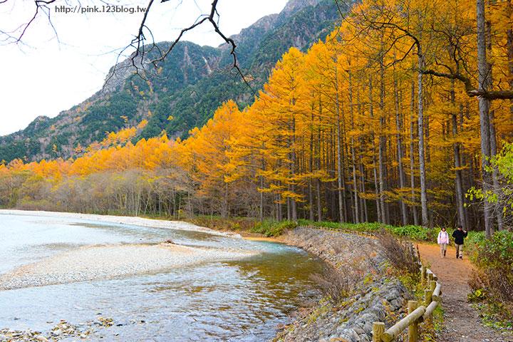 【日本北陸】長野縣上高地。亞洲版的阿爾卑斯山,美麗景緻讓人讚嘆!-DSC_2693.jpg