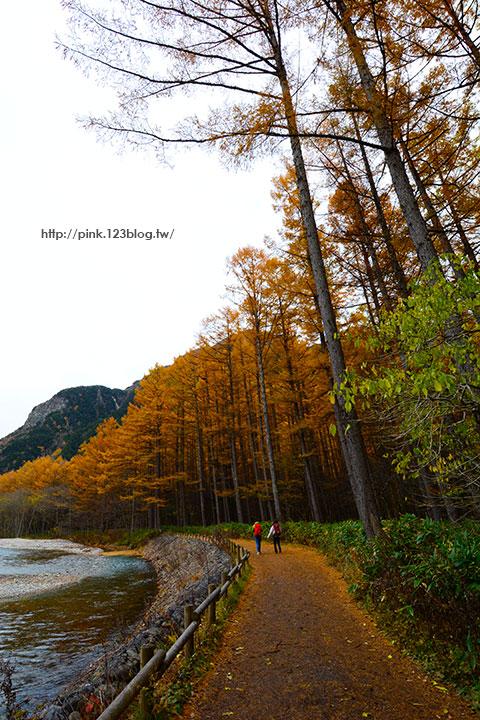 【日本北陸】長野縣上高地。亞洲版的阿爾卑斯山,美麗景緻讓人讚嘆!-DSC_2698.jpg