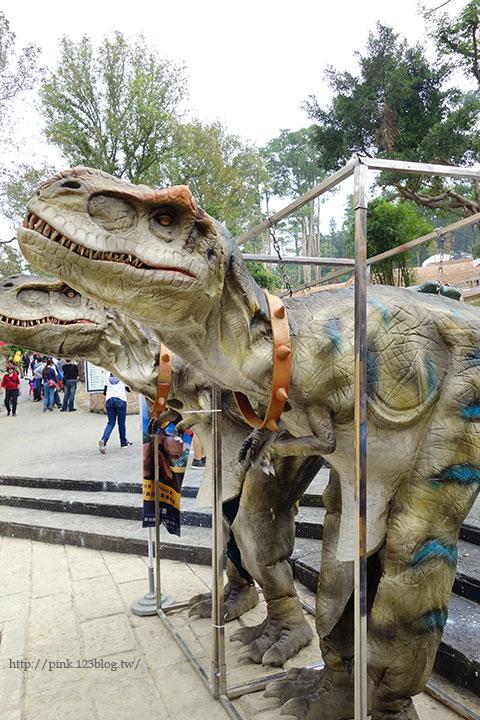 【員林新景點】百果山探索樂園。天啊,我是到侏羅紀公園了嗎?-DSC01951.jpg