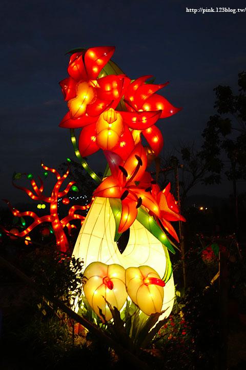 【2017南投燈會】大雞大利好彩投,繽紛花燈亮麗登場。時間106/1/21-2/19。-DSC03321.jpg