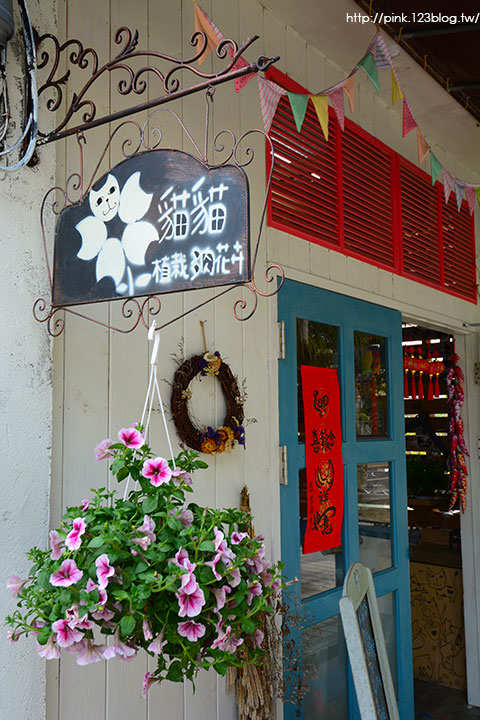 【南投中興新村】朵貓貓花屋-植栽.多肉.花卉。裝飾美化家中的最佳利器!-DSC_7691.jpg