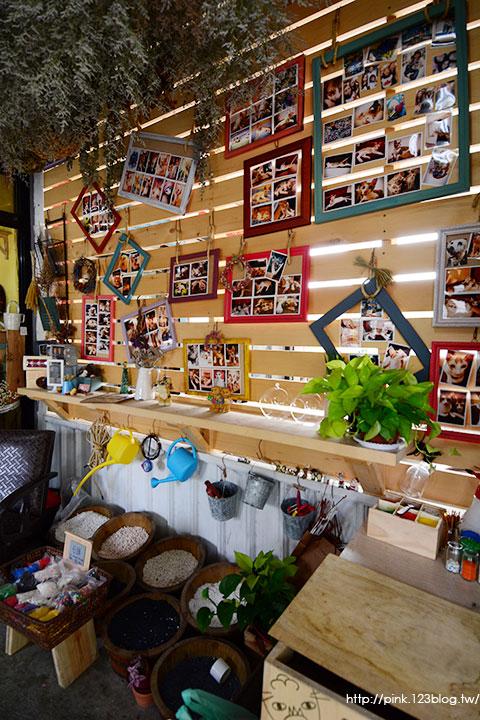 【南投中興新村】朵貓貓花屋-植栽.多肉.花卉。裝飾美化家中的最佳利器!-DSC_7699.jpg