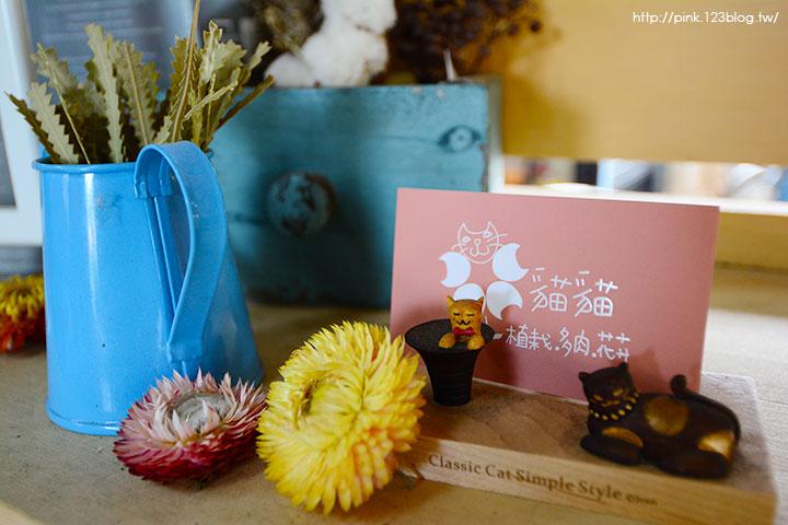 【南投中興新村】朵貓貓花屋-植栽.多肉.花卉。裝飾美化家中的最佳利器!-DSC_7706.jpg