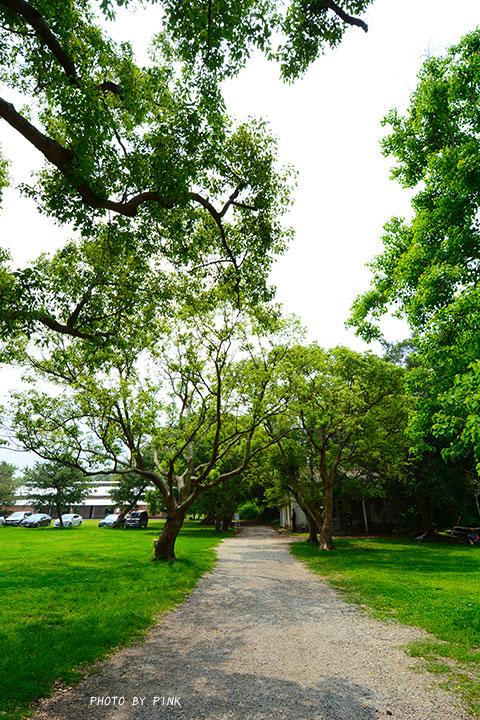 【彰化市旅遊景點】顏氏牧場II。一處擁有自然環境、特色文創、婚攝場景、美食餐廳等多元素的旅點!-DSC_0555.jpg