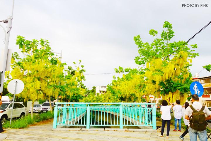 【南投阿勃勒】南投市福崗路上下起了黃金雨,季節限定阿勃勒美麗盛開中。-DSC03056.jpg